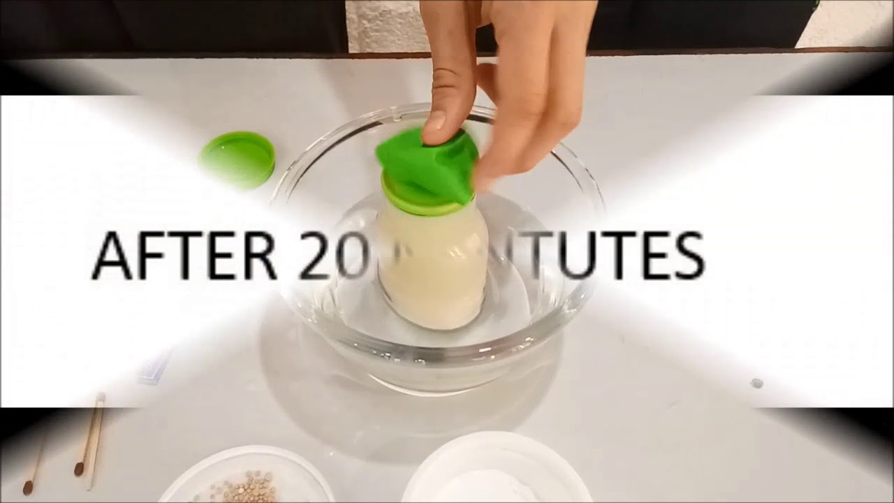 Download Fermentation of sugar by yeast simple experiment
