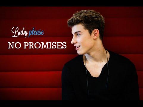 Shawn Mendes - No promises (Lyrics Video)