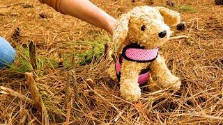 Энна спасает медведя, строит дом для собаки и прогоняет змею. Видео для детей.