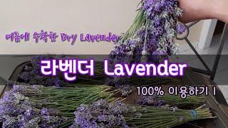 라벤더 꽃 말리는법/ 라벤더 꽃차/ 라벤더 파우치/라벤…