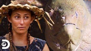 Están hambrientos y comen anguilas para sobrevivir| Supervivencia al desnudo|Discovery Latinoamérica