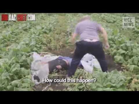 Video về xác người chết trong vụ tai nạn máy bay MH17
