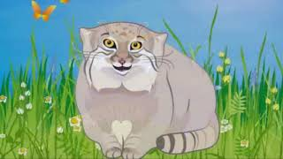 Кот, который в степи живёт