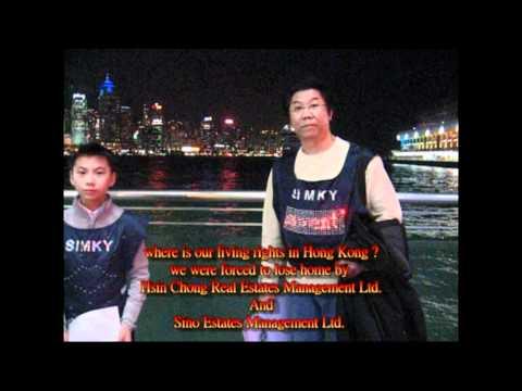 hk news   Hsin Chong Real Estates Management Ltd  and Sino Estates Management Ltd  made us homeless