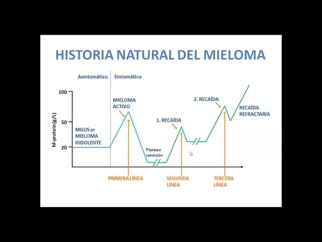 Dra. Guillermina Remaggi - Terapéutica del Mieloma Múltiple: Estado actual