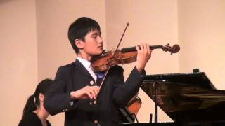 J. Haydn Violin Concerto in G major Movement 1