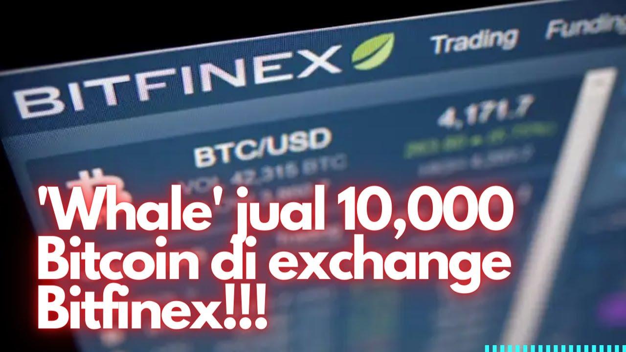 Ką turėčiau investuoti į bitcoin arba litecoin, 15min...