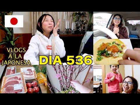 Japonesa Loca Por Los Tacos + No Es Barato el Gusto JAPON [VLOGS DIARIOS] - Ruthi San ♡ 21-02-18