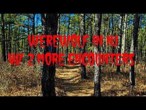 WEREWOLF IN NJ W/ 2 MORE ENCOUNTERS