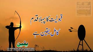 22 Yaqeen Quotes in hindi urdu with voice and images || Yaqeen life changing quotes