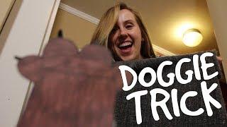 Doggie Trick