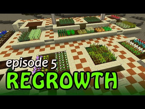 FTB Regrowth #5 - Oasis, Farms, and starting Metal seeds