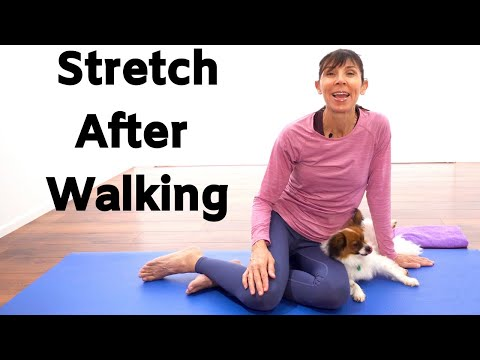 In The Event You Stretch Before Walking