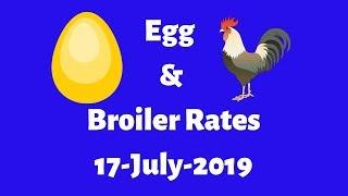 Baixar 17-July-2019 Today Egg & Broiler Rates Pune , Miraj , Nagpur, Mumbai & Ratlam
