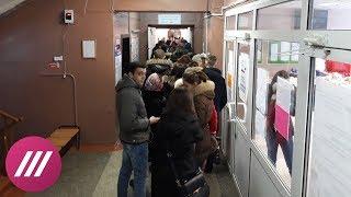 Проголосовал — отметься: как студенты голосуют по спискам в Москве
