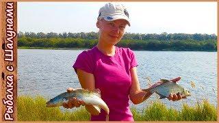 Рыбалка и отдых на Днепре. Ловля на фидер в августе