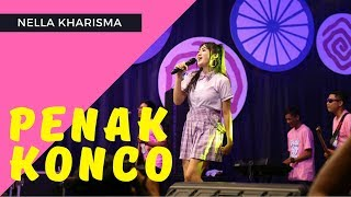 Nella Kharisma - Penak Konco  ( Official Music Video ANEKA SAFARI ) #music