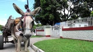 Mr. Vegas, Shaggy, Josey Wales - Sweet Jamaica