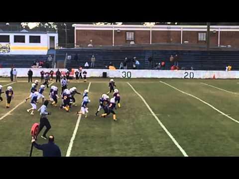 Daniel Island Colts 2014