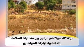 """بركة  """"الحميرا"""" في عجلون بين متطلبات السلامة العامة واحتياجات المواطنين - هذا الصباح"""