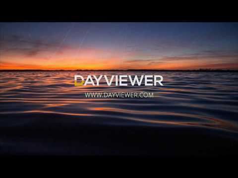DayViewer Online Diary & Collaboration System