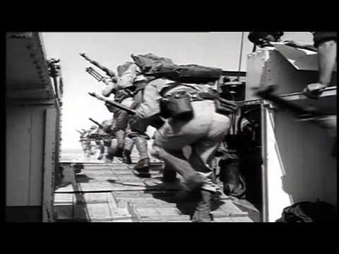 Dutch Marine Corps   Korps Mariniers