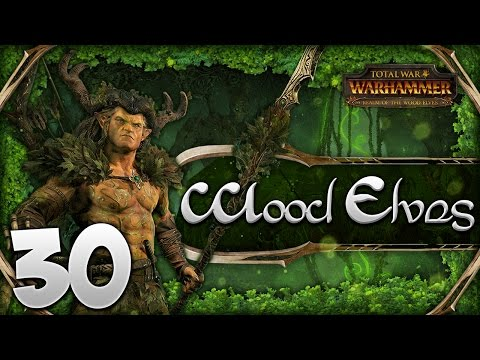 ENDING THE VAMPIRE COUNTS! Total War: Warhammer - Wood Elves Campaign #30