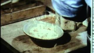 Cookery - boiling techiniques in the kitchen in the 1970's film 8896