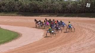 Vidéo de la course PMU PRIX BAR-PMU PETIT PARAPLUIE