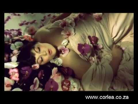 Corlea Botha – SONVANGER (OFFICIAL / AMPTELIKE MUSIEK VIDEO)