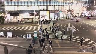 SHURE MV88+ ビデオキットの収録音源
