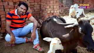 Latest Gau Mata Song | Gau Mata ( Hindu Yodha ) New Haryanvi Songs 2015 , Sandy Pahal,Happy RS