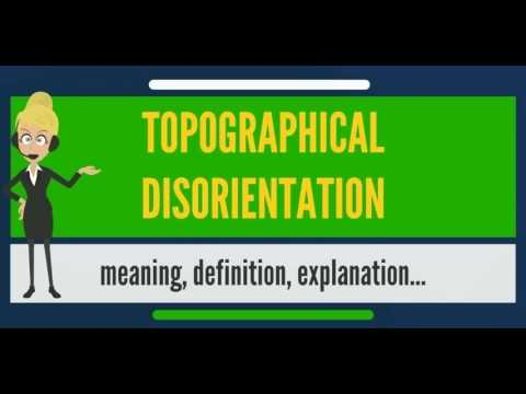 What is TOPOGRAPHICAL DISORIENTATION? What does TOPOGRAPHICAL  DISINTEGRATION mean?