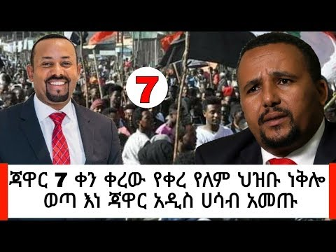Ethiopia: ሰበር መረጃ - ጃዋር 7 ቀን ቀረው ህዝቡ ነቅሎ ወጣ እነ ጃዋር አዲስ ሀሳብ አመጡ   News Abel