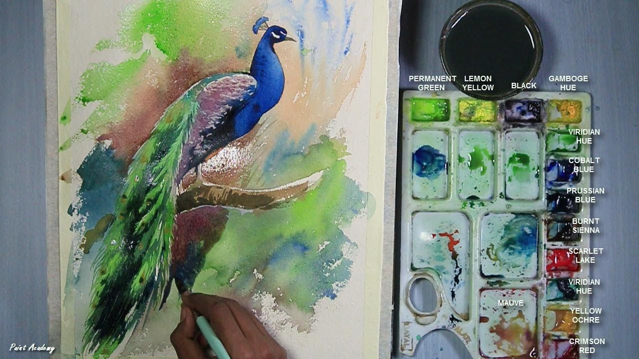 How to Paint A Peacock in Watercolor | step by step - YouTube