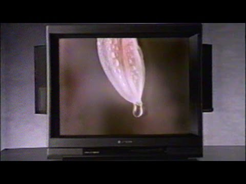 Old Hitachi TV Commercal, Oct 3 1987