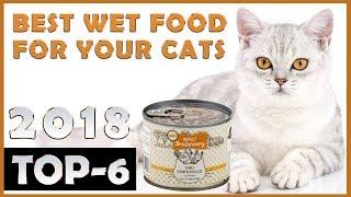 Best 🔥 Wet Cat Food 😸 Review 🔥 TOP 6