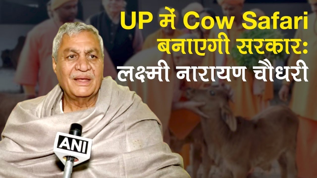 UP में Cow Safari बनाएगी Yogi Govt: Laxmi Narayan Choudhary, Animal Husbandry and Dairy Development Minister