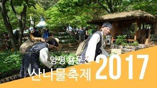 2017 양평 용문산 산나물축제