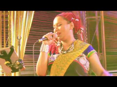 Udaipur World Music Festival 2017 | Nimoli | Dhruv Voyage