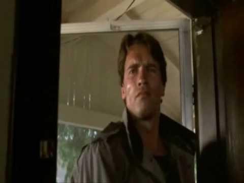 Bores n' Doors The Terminator visits the Irategamer