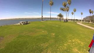 Tibby And Addy The Cairn Terriers Go For A Walk Along A San Diego Beach Part 6