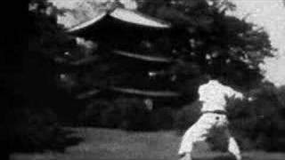 Martial Arts - Shotokan Karate - Kanku sho (bw)