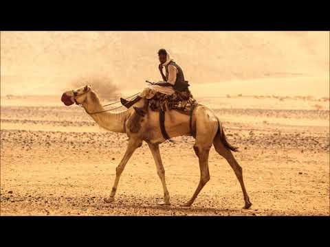 ORKIDZ - Camel Ride (Camel)