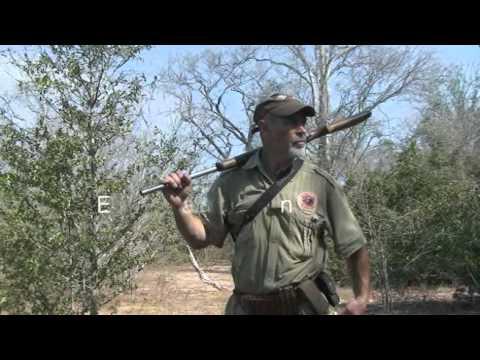 Elephant Hunting Zambezi Valley
