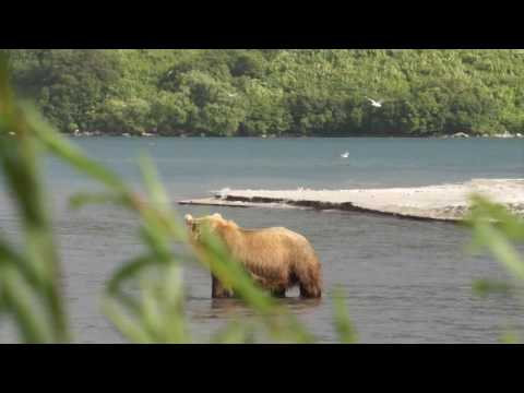 Kamchatka Russia Travel