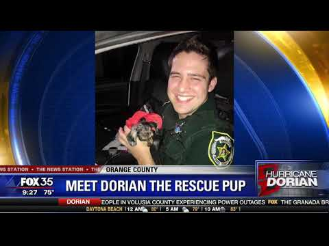 Kevin Campbell - Puppy Rescued From Flooded Vehicle in Orange County During Hurricane Dorian