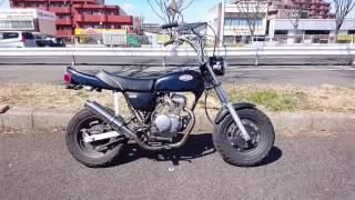 仙台 バイク買取専門店BSS ホンダ エイプ キャブ/カスタム!絶好調!