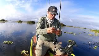 Bass Fishing, Headwaters Lake, Fellsmere