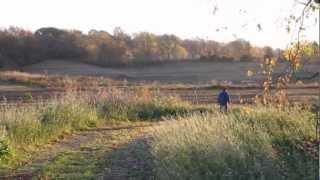 Young Missouri Farmers: Todd Geisert
